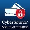 cybersouce-thumbnail100