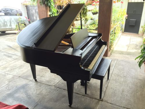 Wegman Piano de Cola - Casa de Pianos Guatemala
