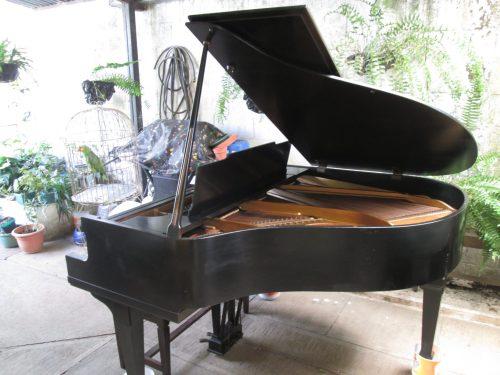 Este hermoso piano fue construido por Steck en 1919. El instrumento se vendió originalmente como el piano de cola