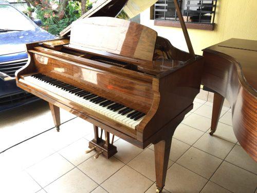 Ahora llega desde Inglaterra a nuestra sala de ventas en Guatemala este precioso piano Challen Baby Grand o de 1/4 de cola.