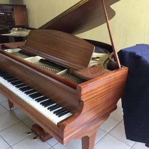 Introducimos al mercado guatemalteco este precioso piano Baby Grand fabricado en 1935 y completamente restaurado a condiciones de fábrica.