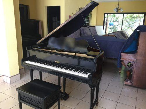 Este piano Steck Victoriano, es una invaluable pieza de antigüedad para coleccionistas o para tenerlo como parte de su decoración y aprendizaje.