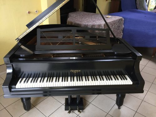 Casa de Pianos les trae este elegante piano de media cola negro marca Feurich del año 1920. Feurich fue fundada en 1851 en Leipzig, Alemania.